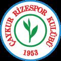 Caykur Rizespor's team badge