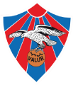 Valur Reykjavik's team badge