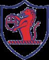 Raith Rovers FC's team badge