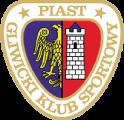 P.Gliwice team badge