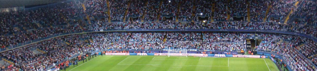 La Rosaleda stadium where Malaga play football in the